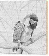 Bw Parrot Wood Print