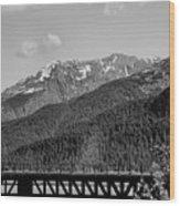 Bw Rail Alaska  Wood Print