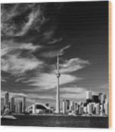 Bw Skyline Of Toronto Wood Print by Andriy Zolotoiy