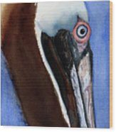 Bwon Pelican Eye Wood Print