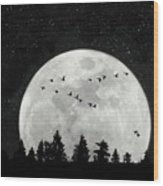 By The Light Of The Silvery Moon - Birds  Wood Print