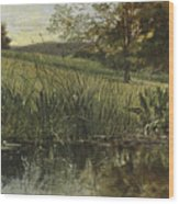 By The Riverbank, 1869 Wood Print