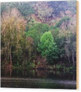 By The Riverside Wood Print