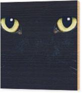 C6 Oliver Wood Print
