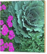 Cabbage And Vinca Wood Print