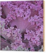 Cabbage Wood Print