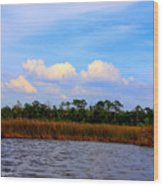 Cabbage Palms And Salt Marsh Grasses Of The Waccasassa Preserve Wood Print