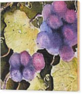 Cabernet Harvest 2 Wood Print