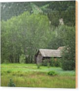 Cabin In The Aspens  Wood Print