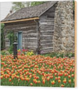 Cabin In The Tulips Wood Print