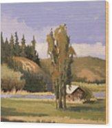 Cabin On The Kootenai Wood Print