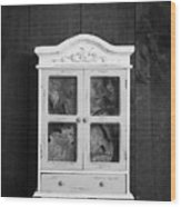 Cabinet Of Curiosity Wood Print