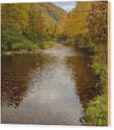 Cabot Trail Autumn 2015 Wood Print
