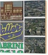 Cabrini 60610 Wood Print