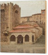 Caceres Spain Wood Print