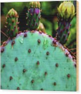 Cacti And Friends Wood Print