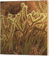 Cacti Family Reunion Wood Print