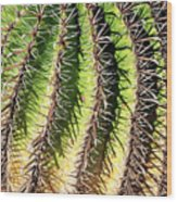 Cacti Needles Wood Print