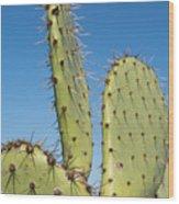 Cactus Against Blue Sky Wood Print