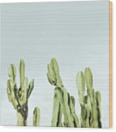 Cactus And Sky Vintage Wood Print