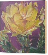 Cactus Blossom On Purple Background Wood Print