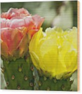 Cactus Bouquet Wood Print