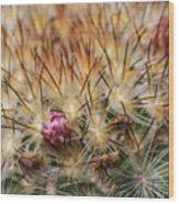 Cactus Bud Wood Print