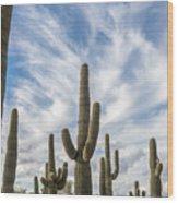 Cactus Choir Wood Print