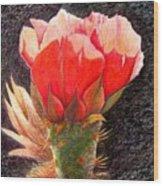Cactus Cutie Wood Print