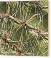 Cactus Diagonal Pattern Wood Print