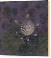 Cactus Eve Wood Print