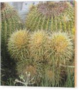 Cactus Family Wood Print