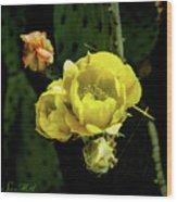 Cactus Flower 07-010 Wood Print