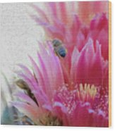 Cactus Flower And A Busy Bee Wood Print