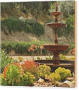 Cactus Fountain Wood Print