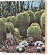 Cactus Galore  Wood Print