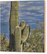 Cactus Home Wood Print