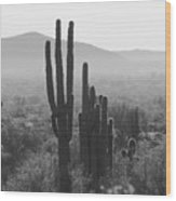 Cactus In Black And White Wood Print