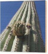 Cactus In The Sky  Wood Print