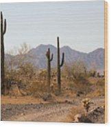 Cactus Line Dirt Road Wood Print