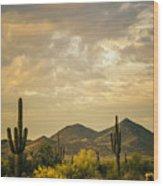 Cactus Morning Wood Print