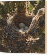 Cactus Nest Wood Print