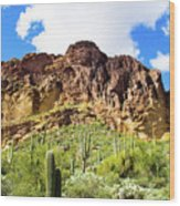 Cactus On The Mountainside Wood Print