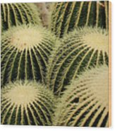 Cactus Party Wood Print