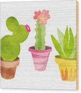 Cactus Plants In Pretty Pots Wood Print