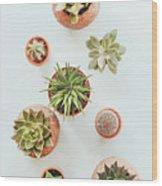 Cactus Pots Wood Print