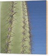 Cactus Side View Wood Print
