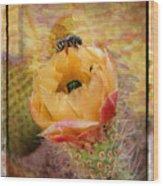 Cactus Spring Beauty W Frame Wood Print