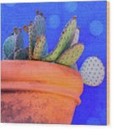 Cactus With Blue Dots Wood Print