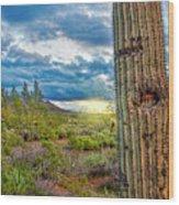 Cactus With Teeth Wood Print
